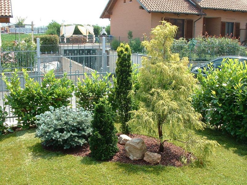 Verdeacqua service progettazione e costruzione giardini for Progettazione aiuole
