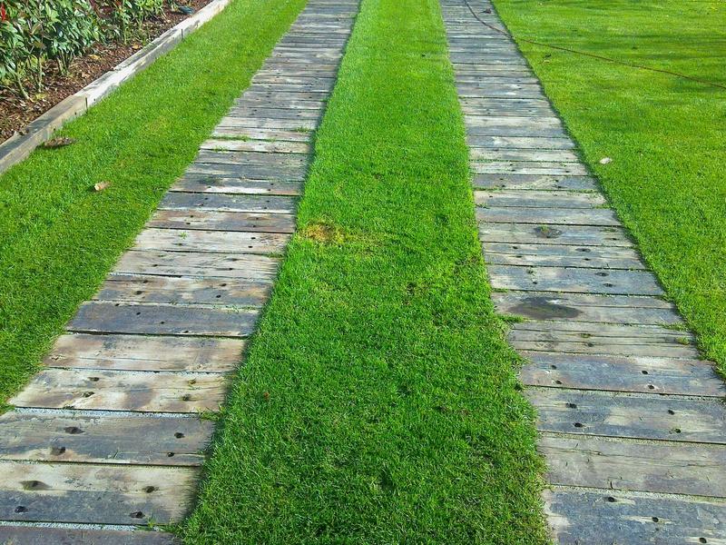 Verdeacqua service pergole e pavimenti per esterni